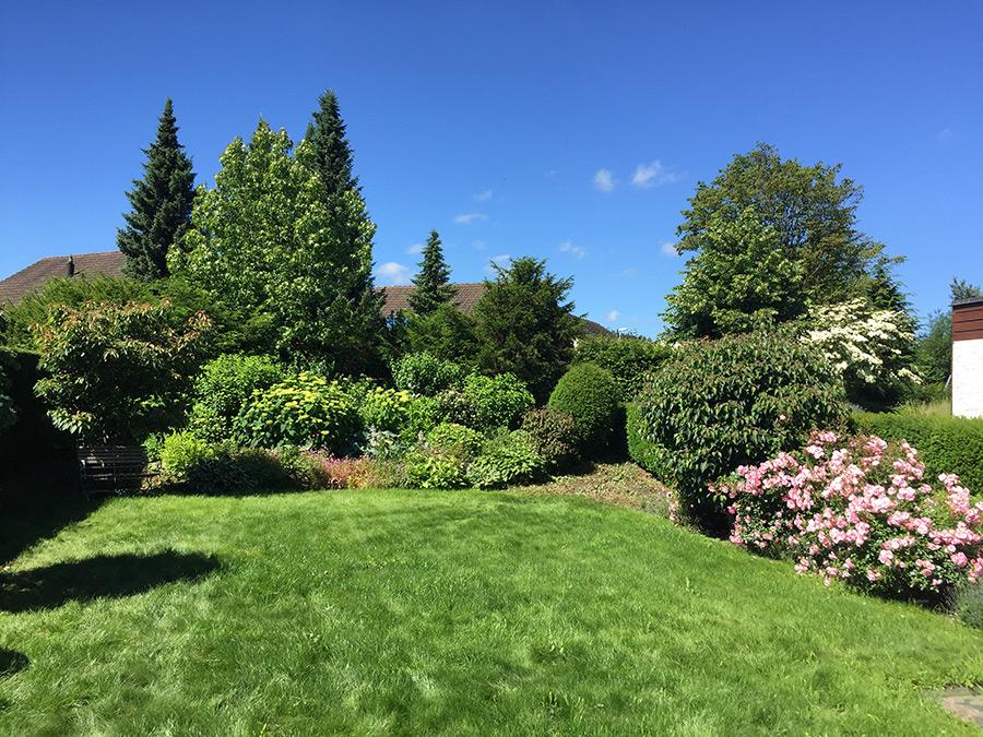 Hächler Hauswartungen und Gartenunterhalt